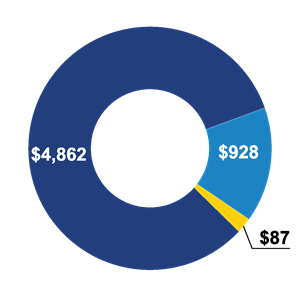 Program expenditure pie graph for 2018 includes funds allocated for programs and support facilities, operations and fundraising