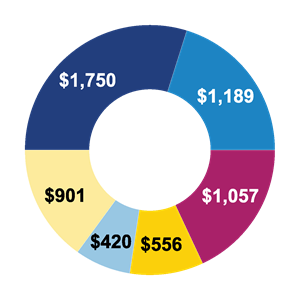 Revenue pie graph breakdown for 2018 including government grants, membership, programs and services, fundraising, facilities and other.